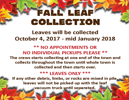 fall leaf collection for OCT 2017 - JAN 2018